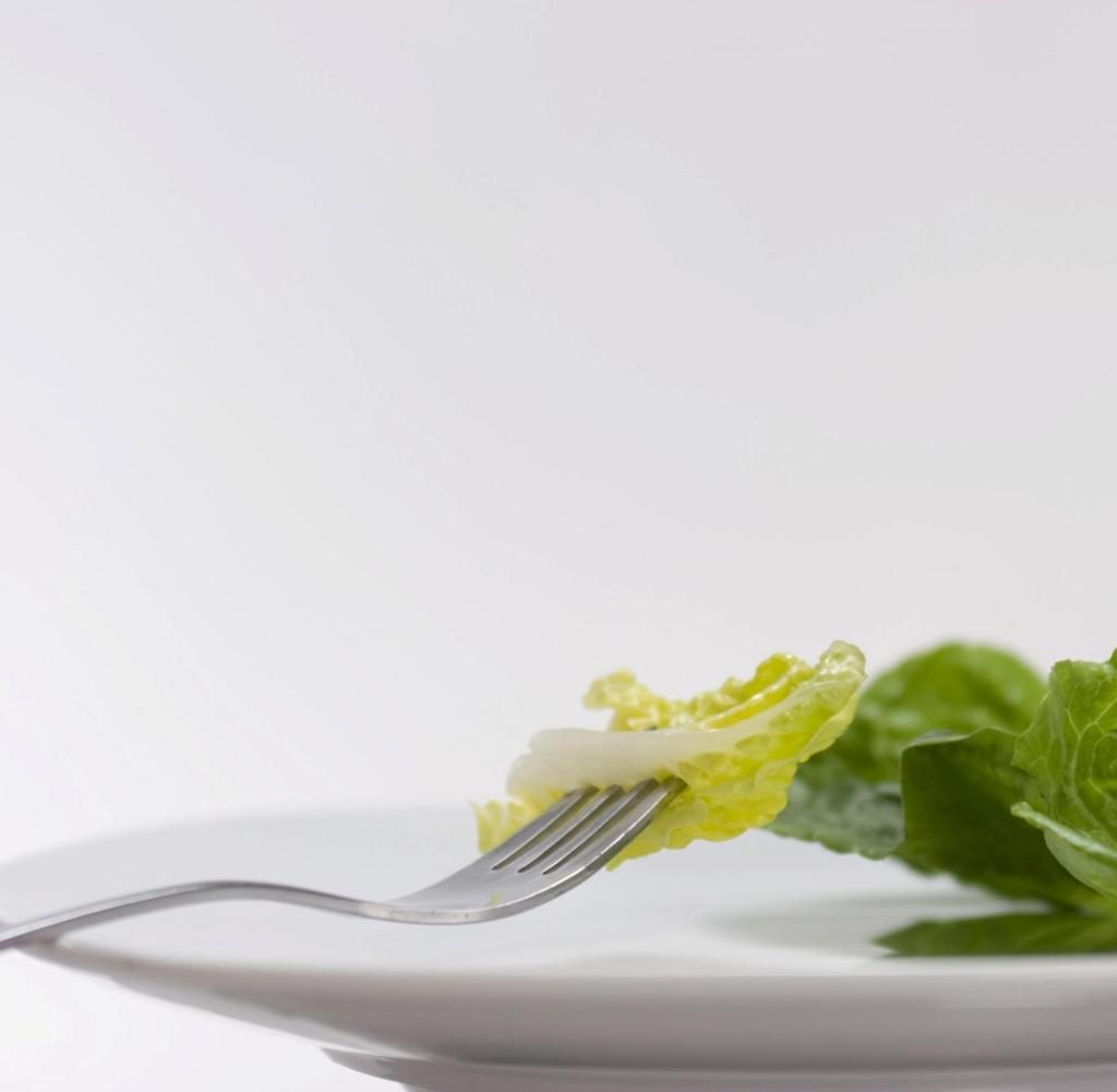 Resistente Bakterien auf fertig geschnittenem Salat gefunden