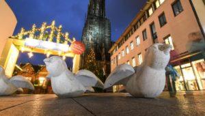Anti-Terror-Spatzen sollen Weihnachtsmarkt in Ulm bewachen