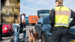 Zoll öffnet Kofferraum von Auto – Was Beamte dann sehen, verschlägt ihnen die Sprache