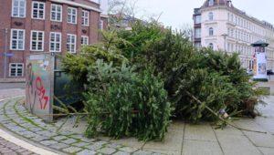 So werden Sie jetzt Ihren  Weihnachtsbaum los